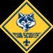 Cub Scout Pack 229